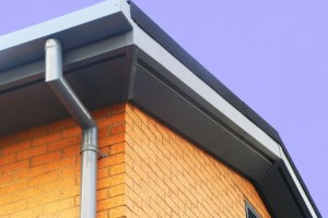 Box Gutters and Downpipe